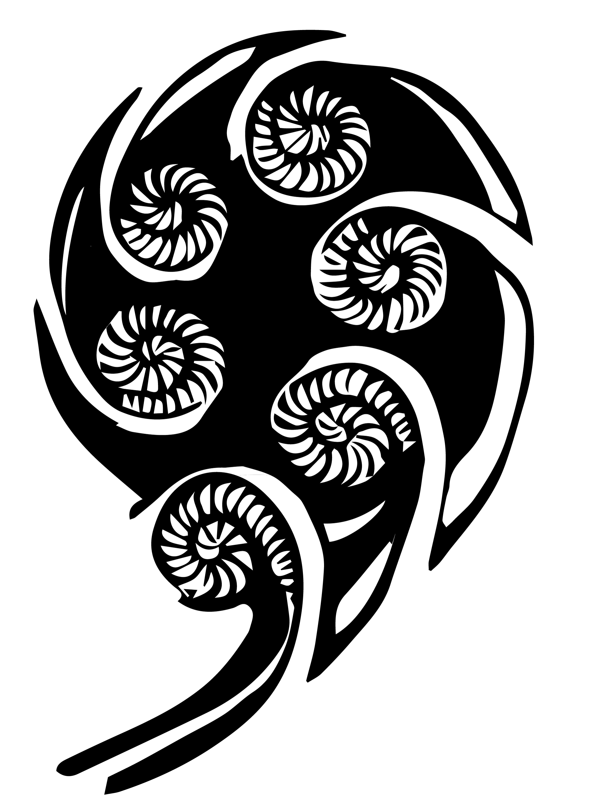 Another koru vector background