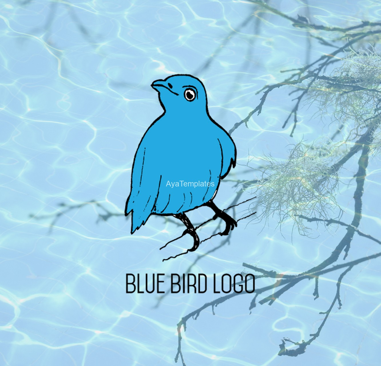 blue-bird-logo