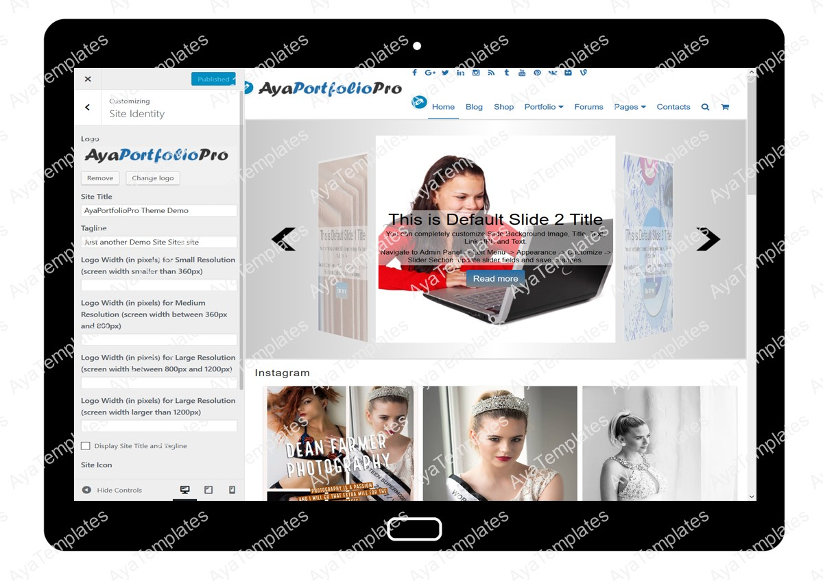 AyaPortfolioPro Customizing Site Identity