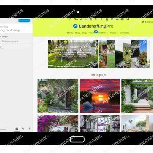 LandshaftingPro Customizing Background Image
