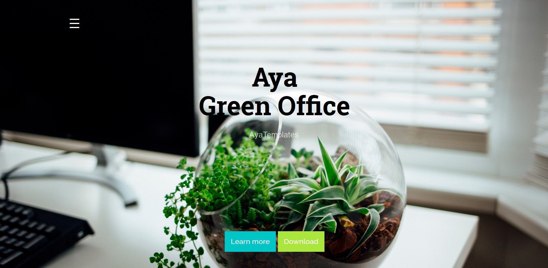 AyaGreenOffice-product-image1
