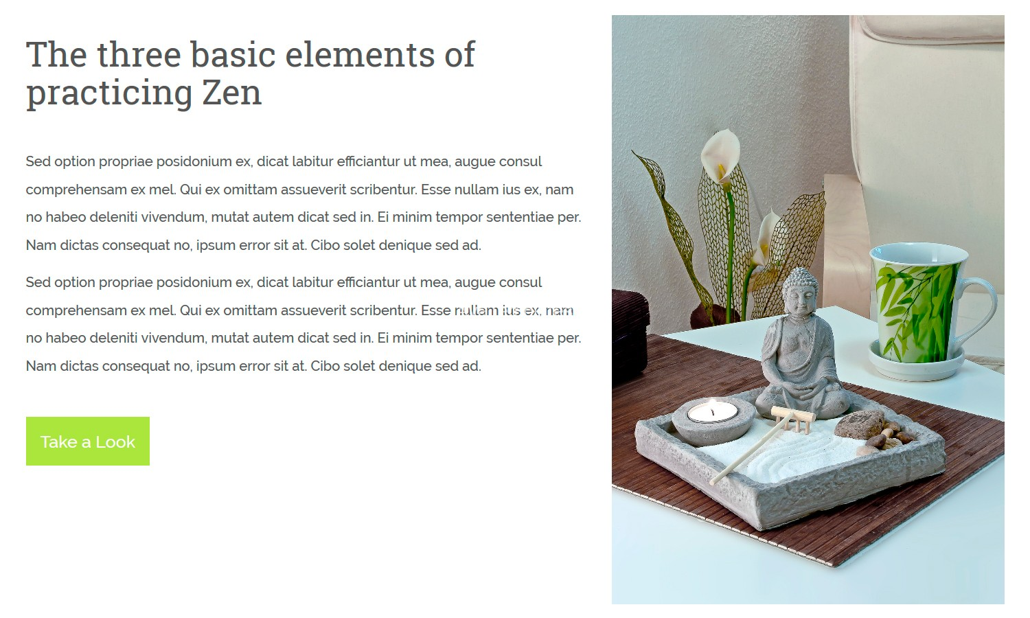 AyaZen-premium-Css-html-one-page-site-mockup3