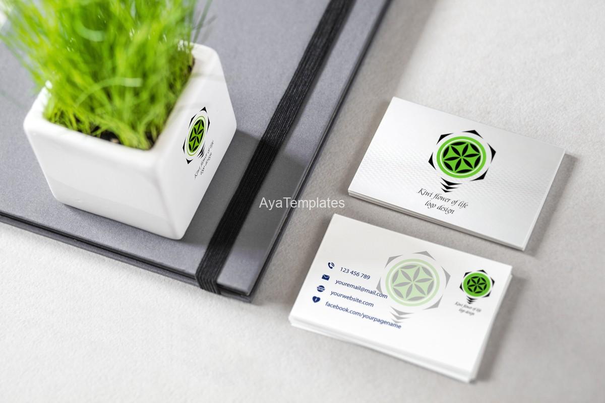 01-kiwi-logo-design-mockup