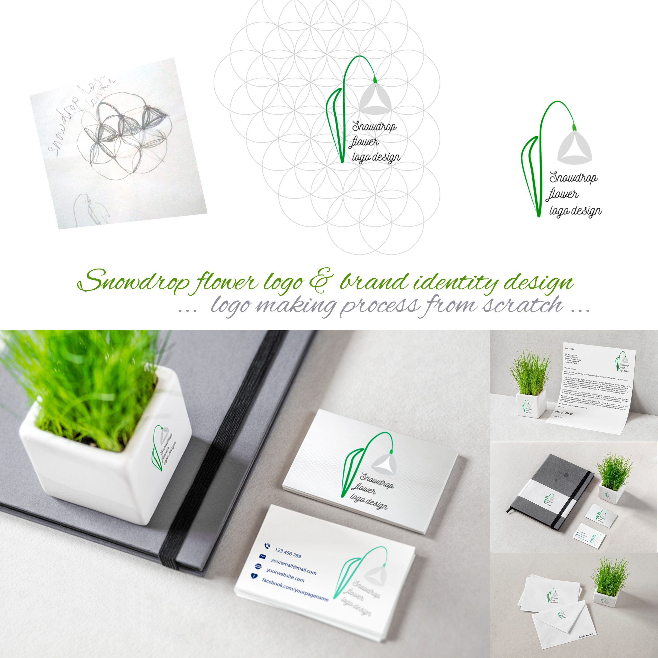 Snowdrop-flower-logo-making-process