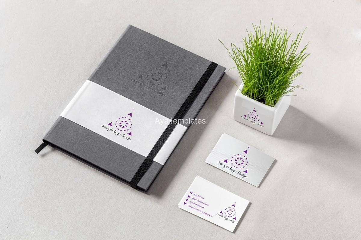 03-sacred-triangle-logo-design-mockup