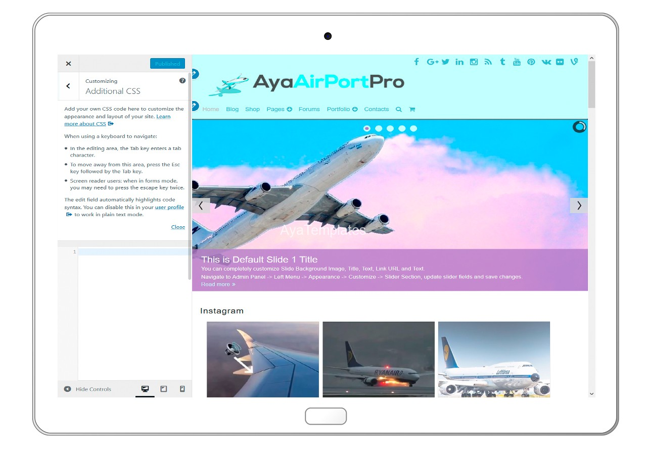 ayaairportpro-customizing-additional-css