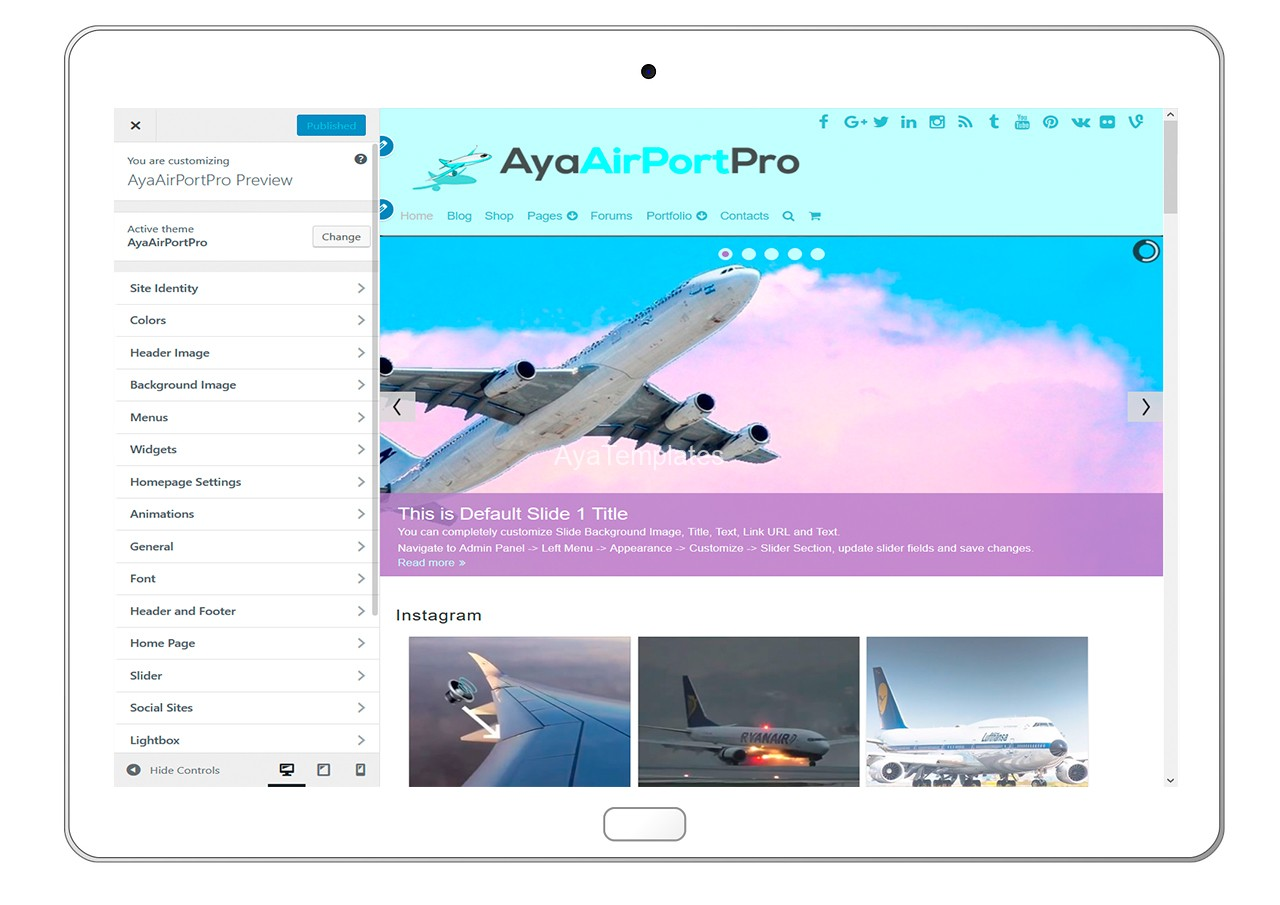 ayaairportpro-customizing-all-options