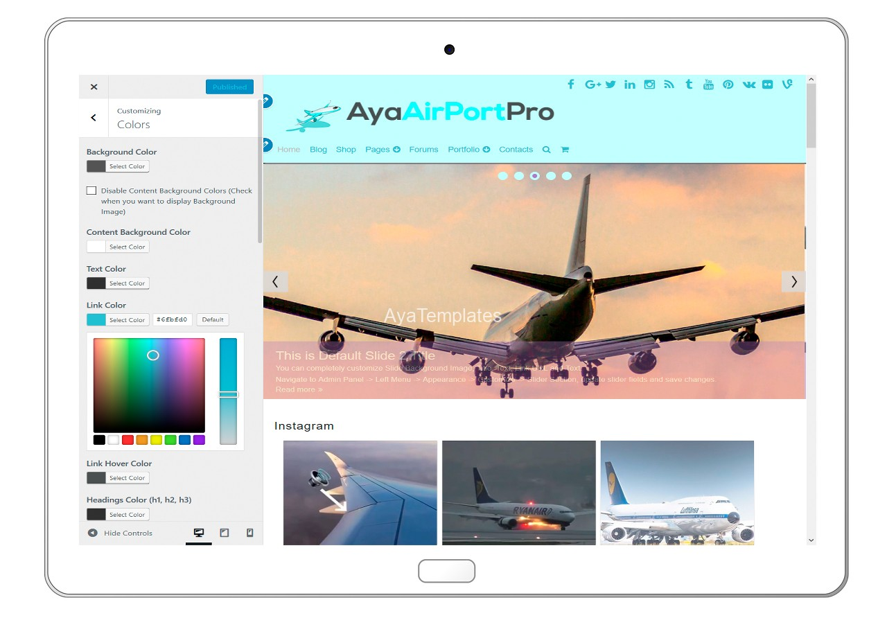 ayaairportpro-customizing-colors