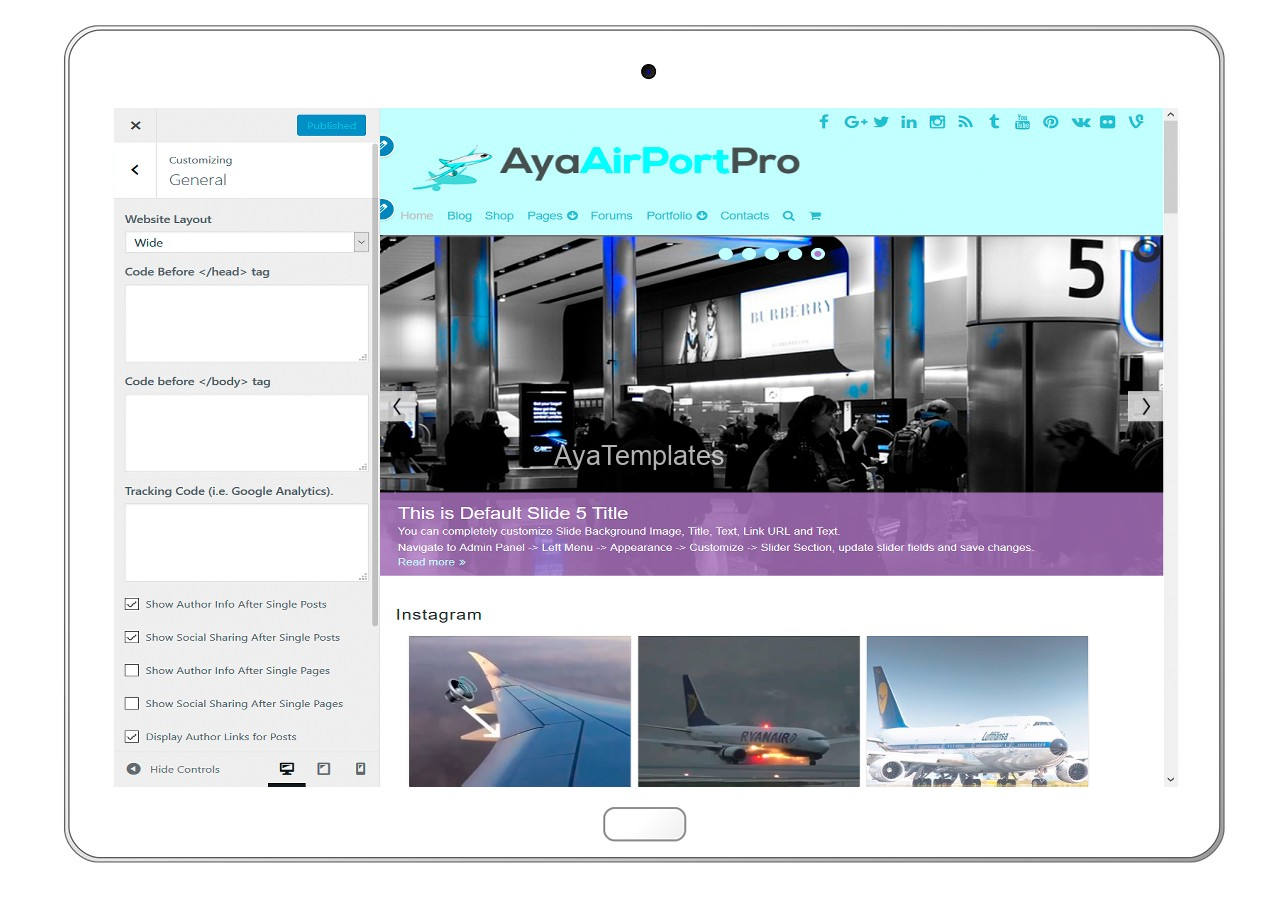 ayaairportpro-customizing-general