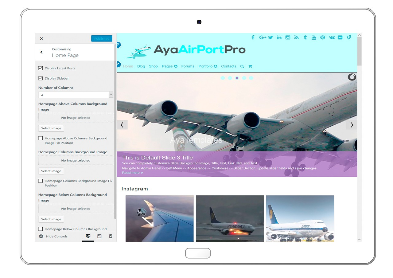 ayaairportpro-customizing-home-page