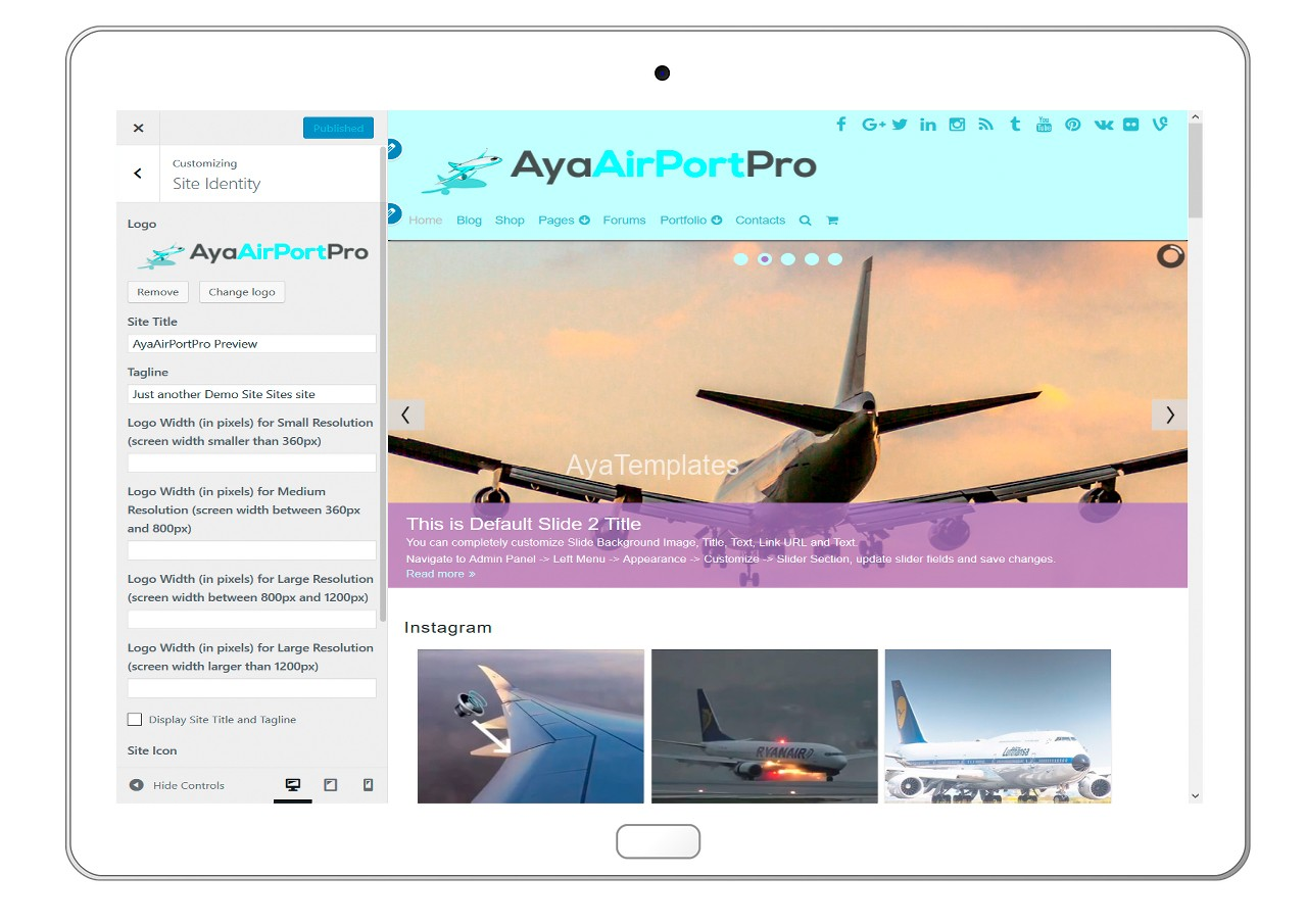 ayaairportpro-customizing-site-identity