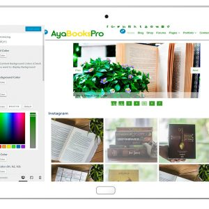 ayabookspro-customizing-colors