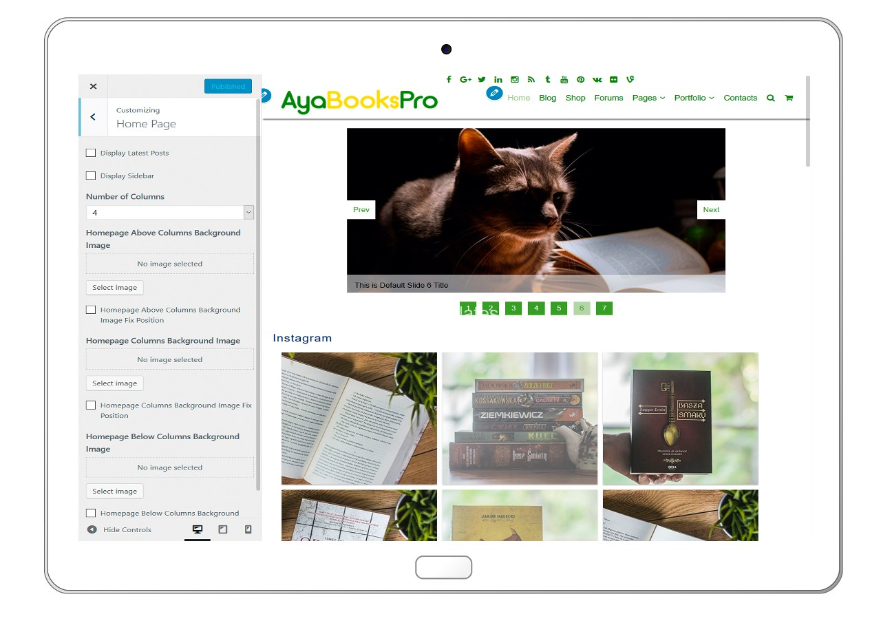ayabookspro-customizing-home-page