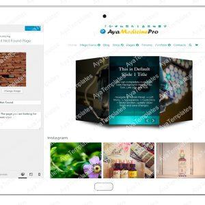ayamedicinepro-customizing-404-not-found-page