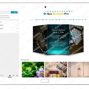 ayamedicinepro-customizing-woo-commerce