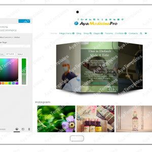 ayamedicinepro-customizing-woo-commerce1