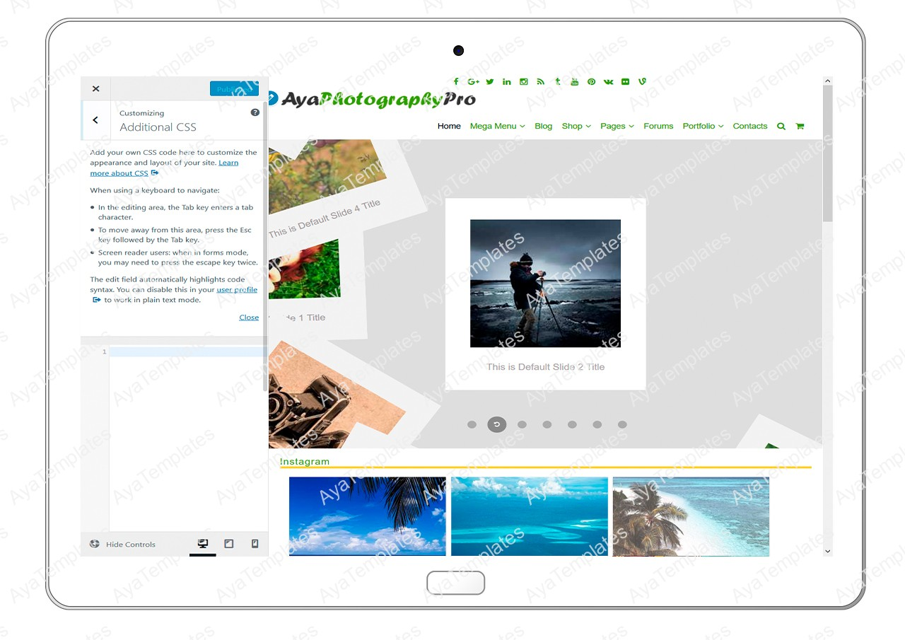 ayaphotograpypro-customizing-additional-css