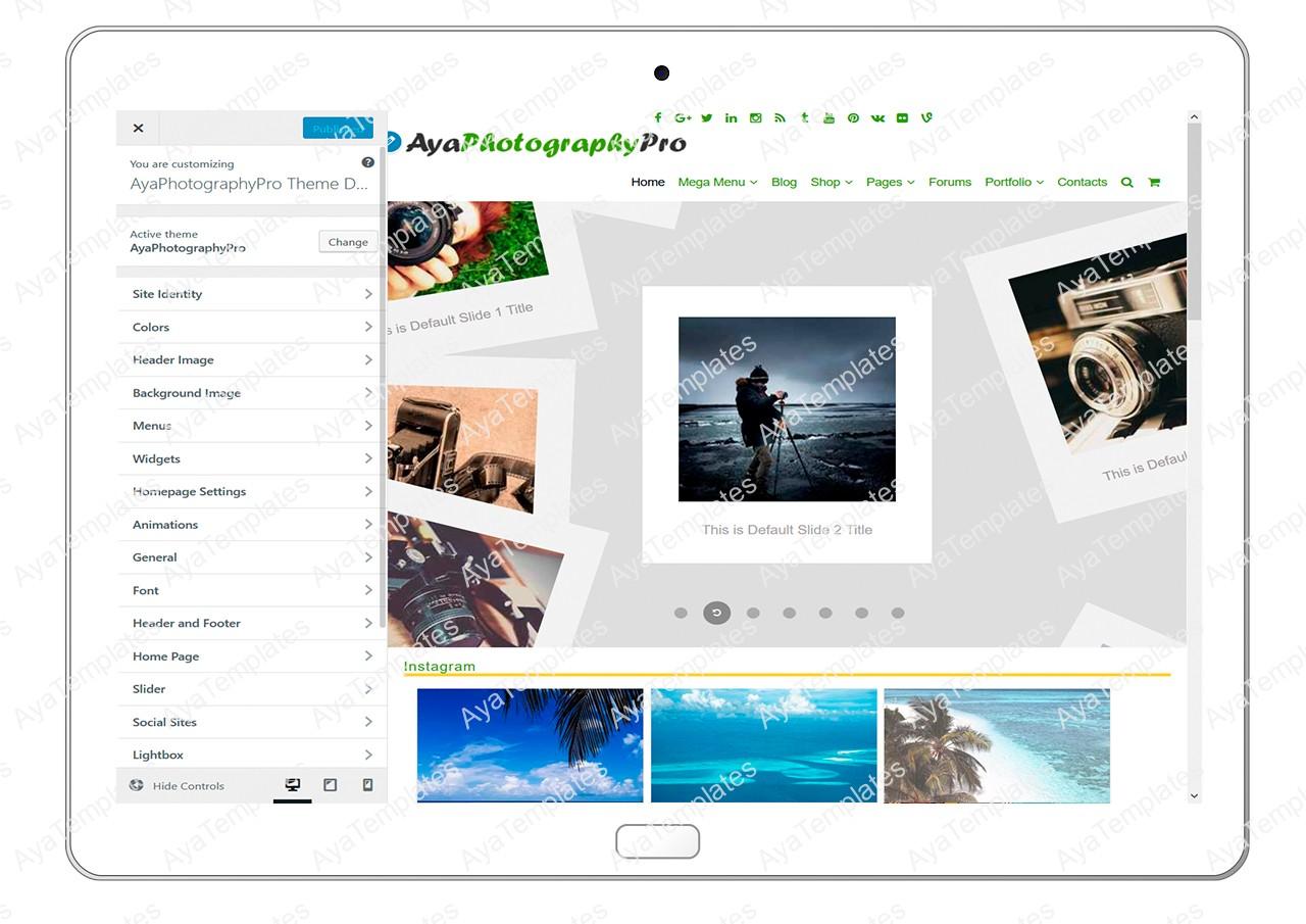 ayaphotograpypro-customizing-all-options