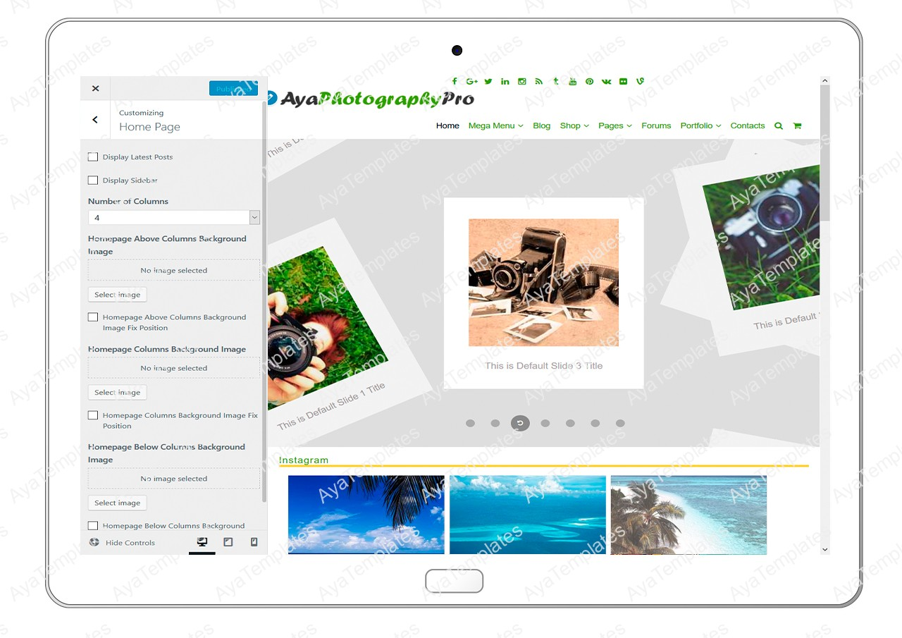 ayaphotograpypro-customizing-homepage