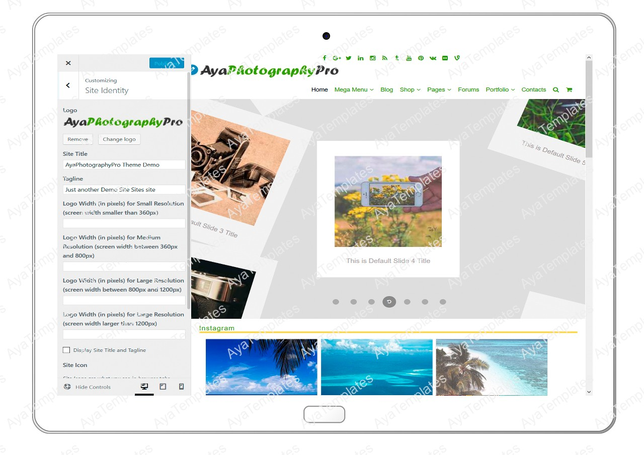 ayaphotograpypro-customizing-site-identity