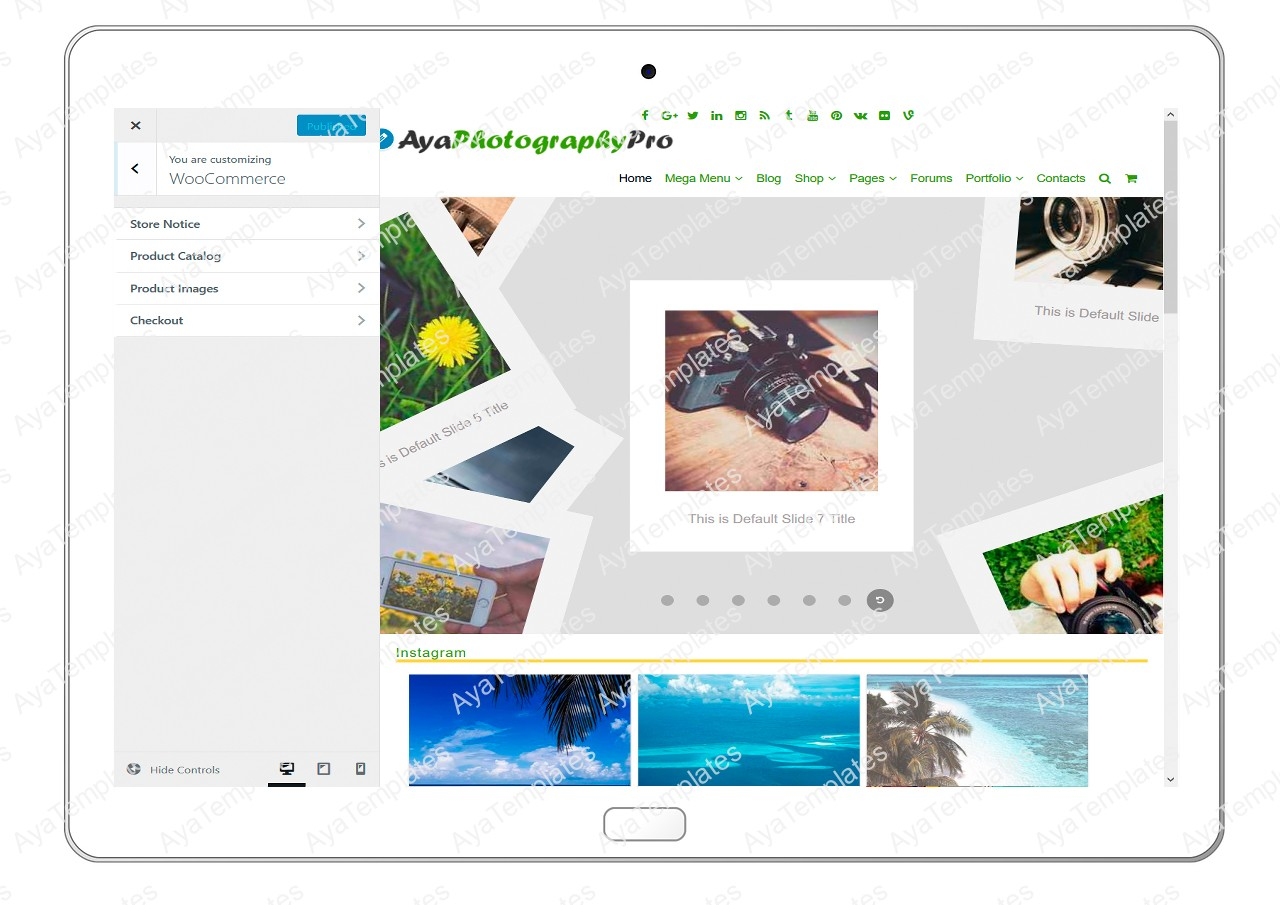 ayaphotograpypro-customizing-woocommerce