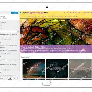 ayapsychologypro-customizing-homepage