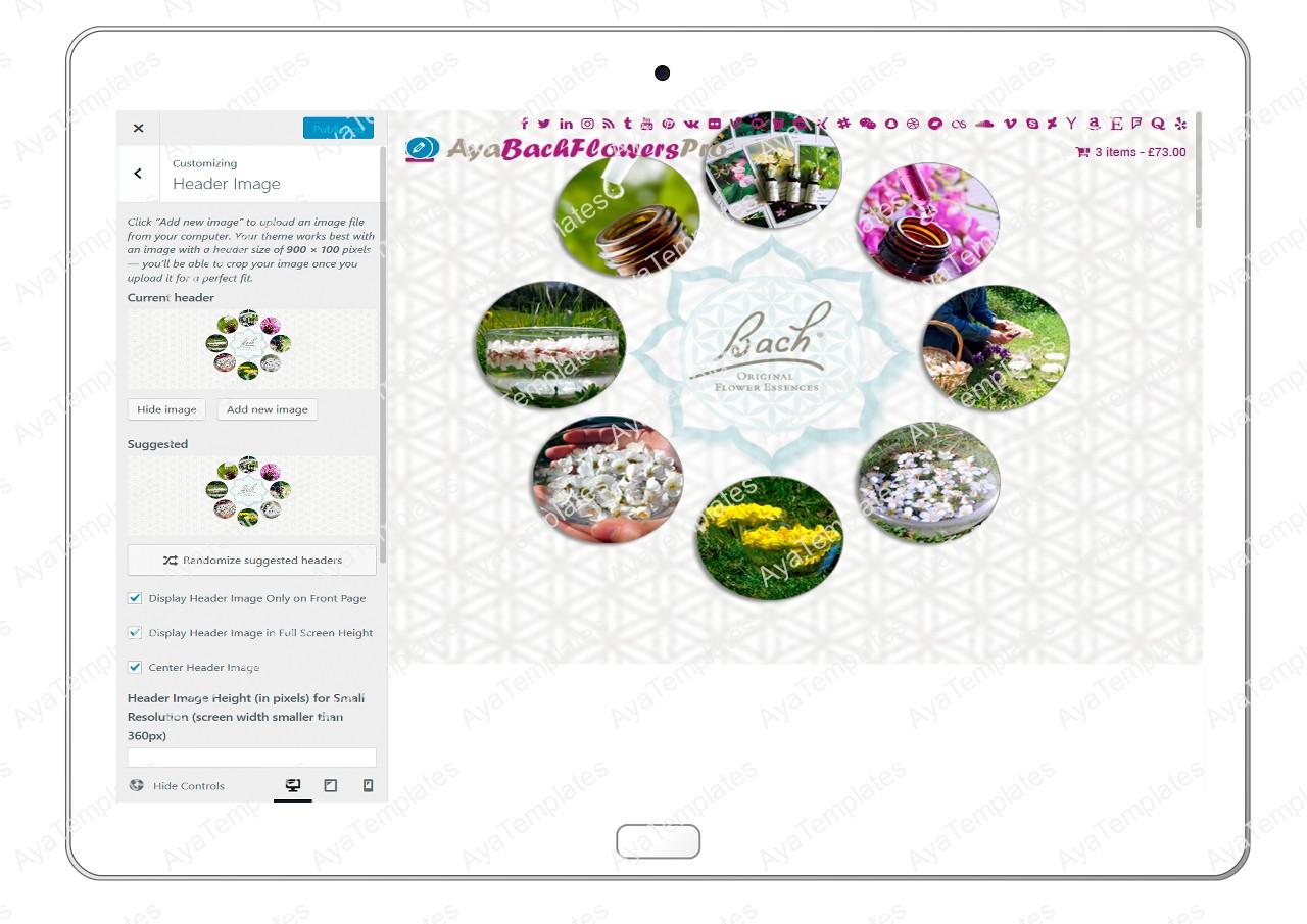 AyaBachFlowersPro-customizing-header-image