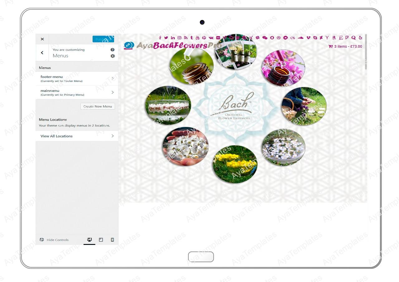 AyaBachFlowersPro-customizing-menus
