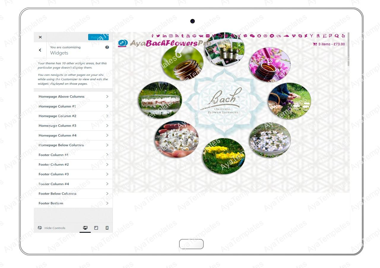 AyaBachFlowersPro-customizing-widgets