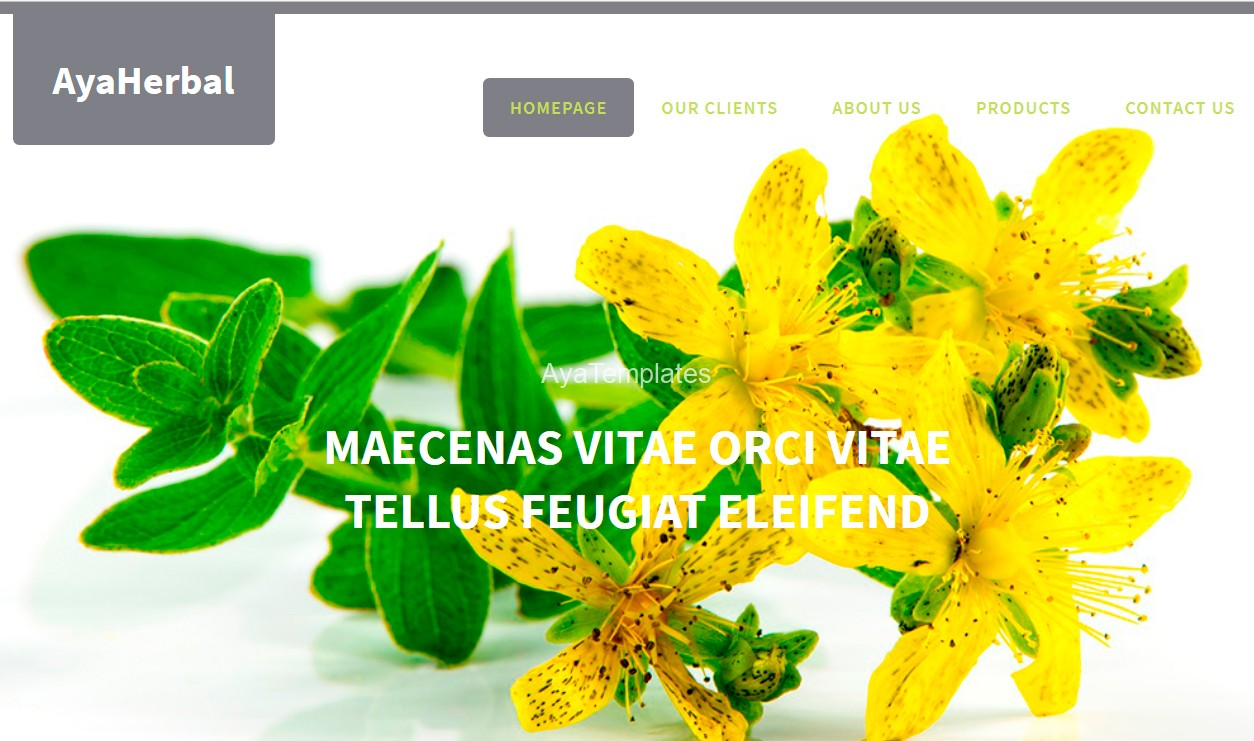 AyaHerbal-css-designed-site-template-product-content1