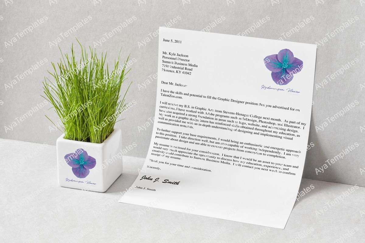 Hydrangea-flower-design-branding-mockup-aya-templates