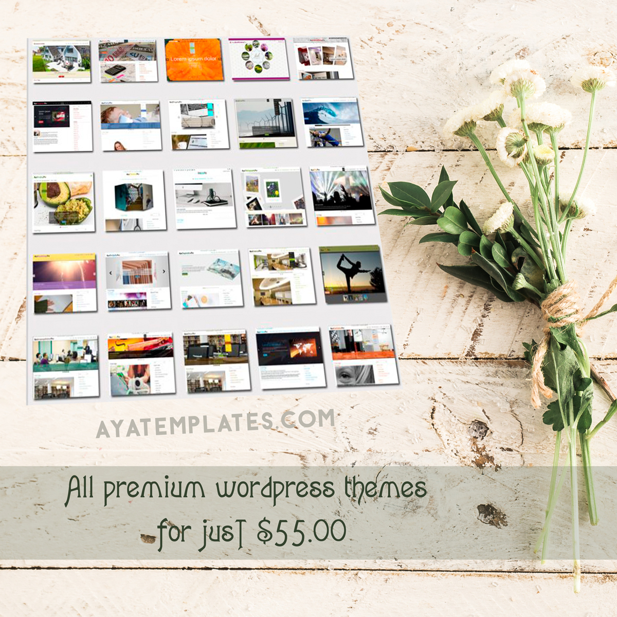 all-premium wordpress themes-offer-package