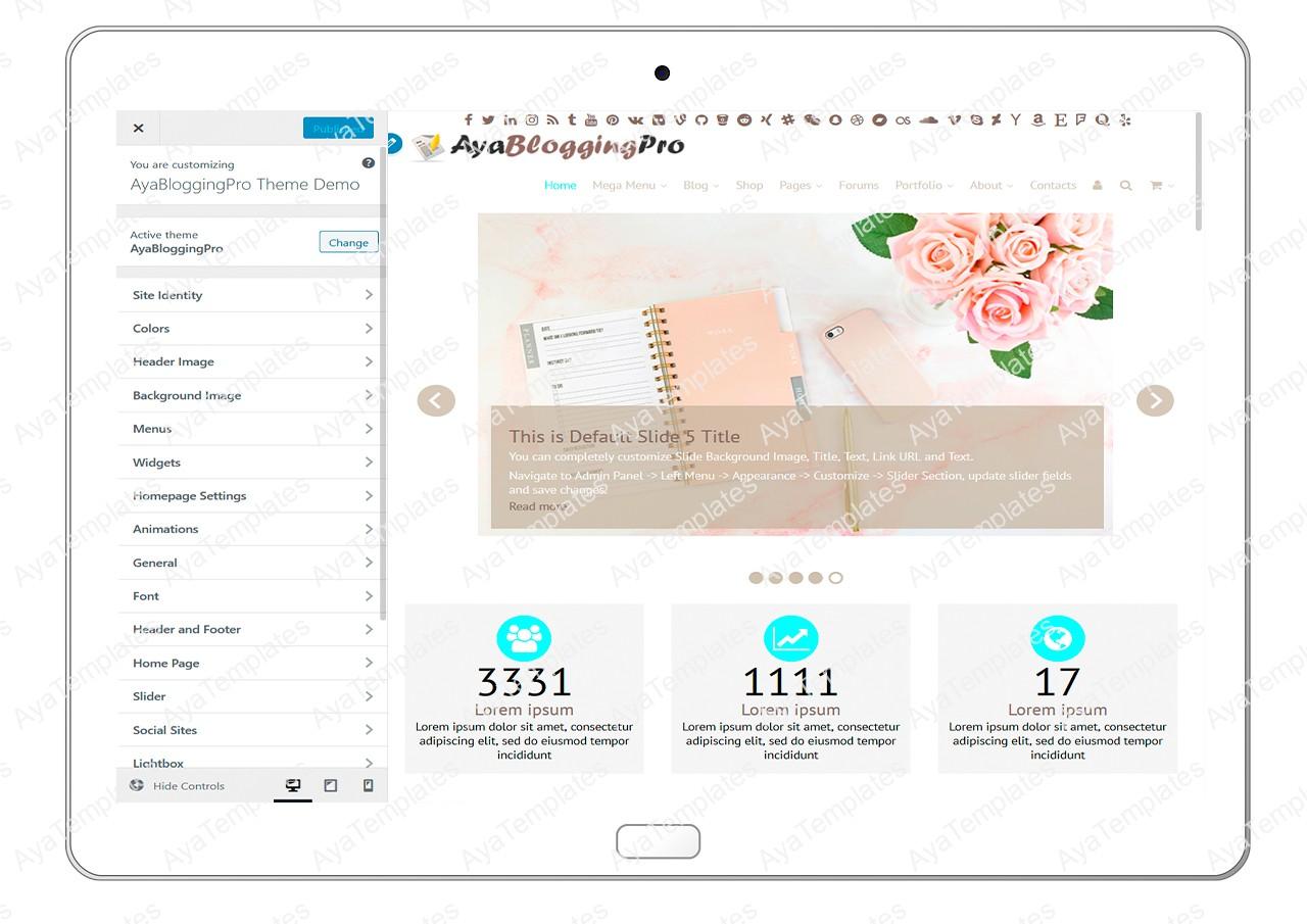 ayabloggingpro-customize-all-options