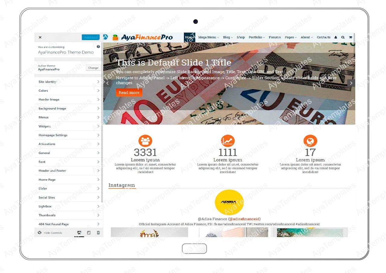 ayafinancepro-customizing-all-options