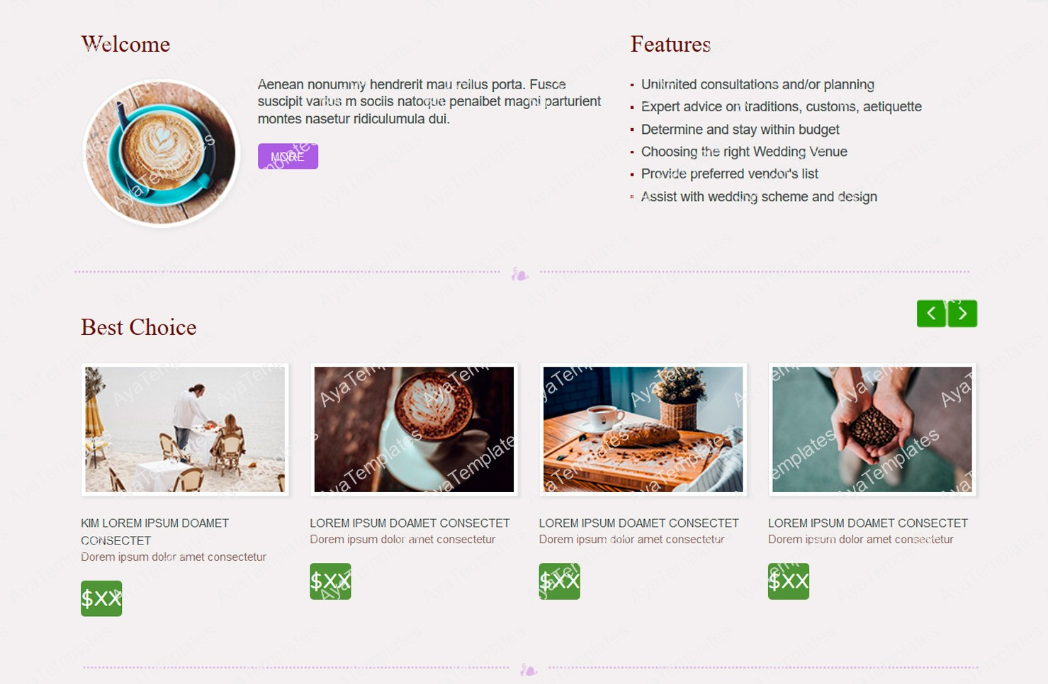 ayafirefly-css-designed-site-layout-2-aya-templates