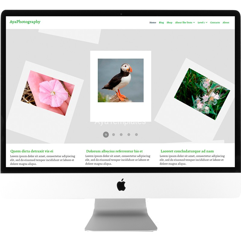 ayaphotography-free-wordpress-theme-desktop-mockup-ayatemplates