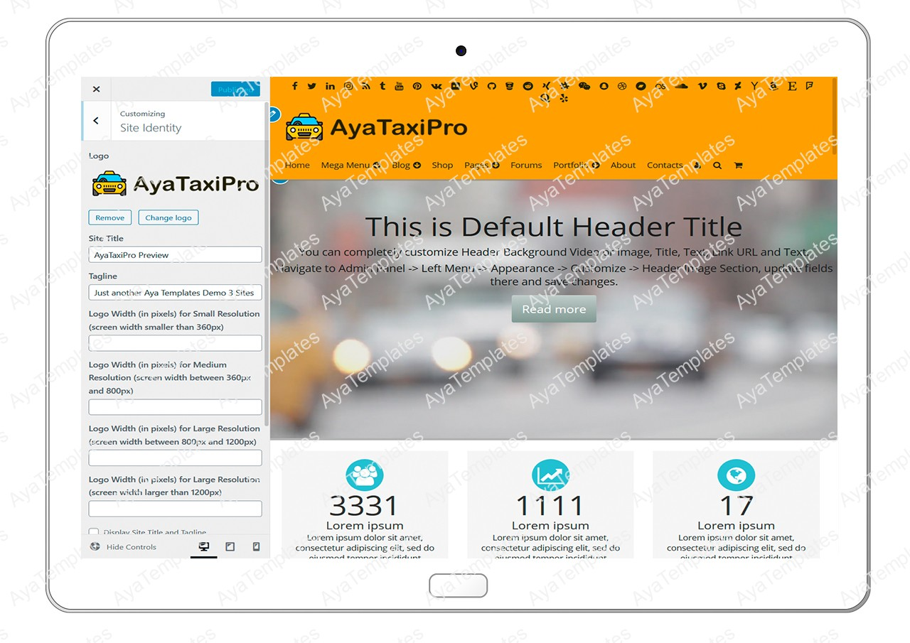 ayataxipro-customizing-site-identity1