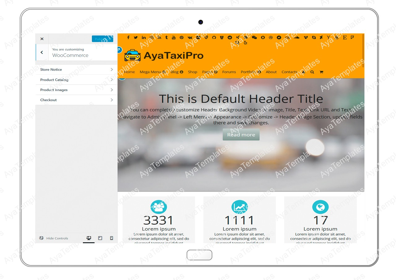 ayataxipro-customizing-woocommerce1