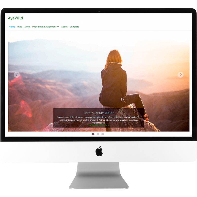 ayawild-free-wordpress-theme-desktop-mockup-ayatemplates