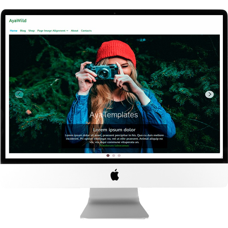 ayawild-free-wordpress-theme-desktop-mockup-ayatemplates_com
