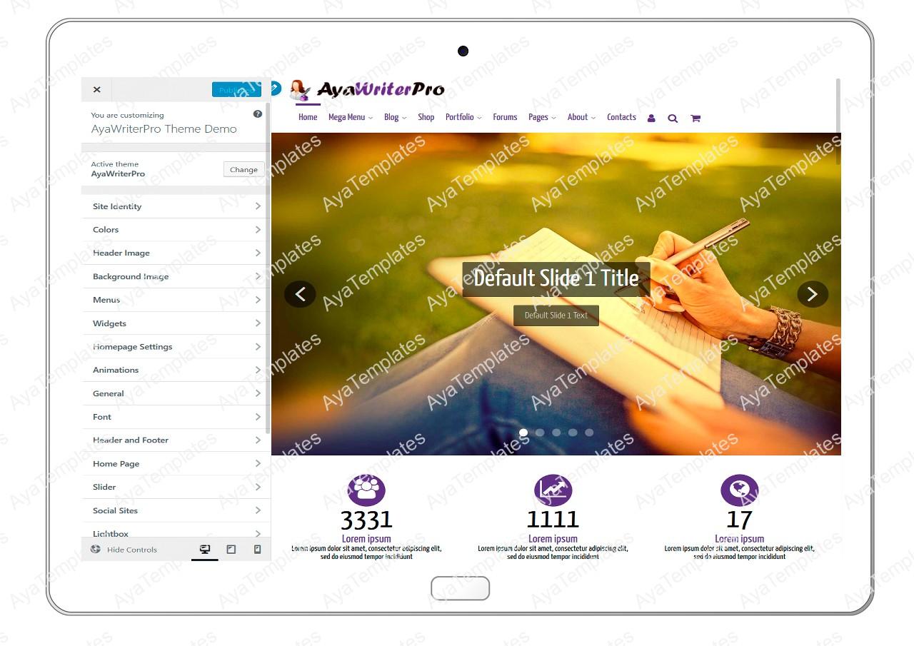 ayawriterpro-customizing-all-options