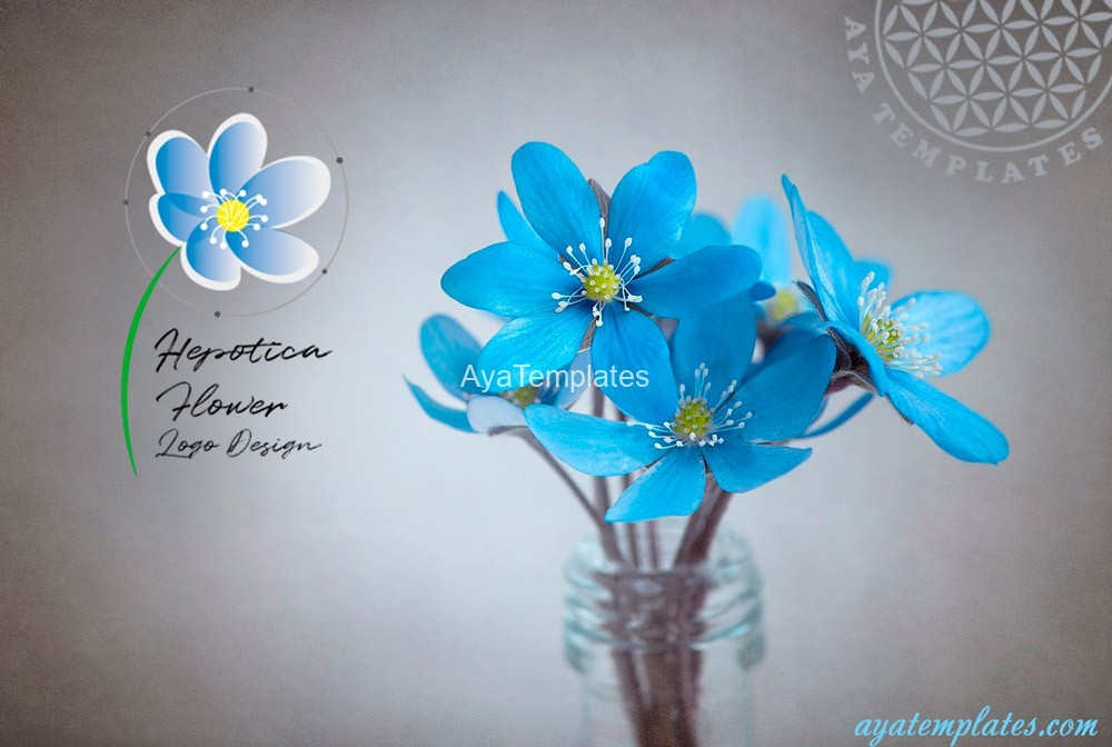 hepatica-flower-logo-design-and-brand-identity-mockup