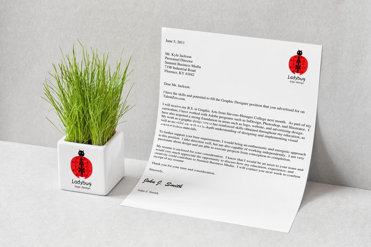 ladybug-logo-design-branding-mockup1