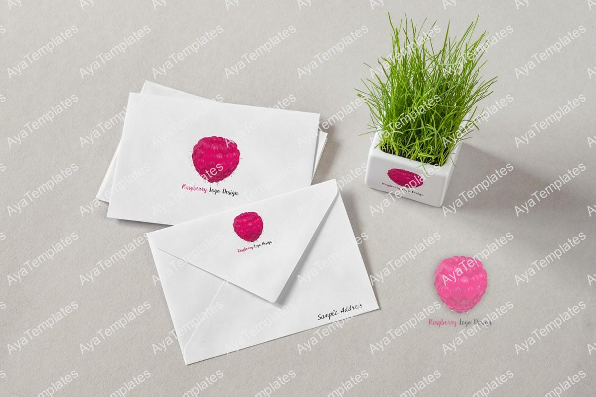 raspberry-logo-design-brand-mockup-aya-templates