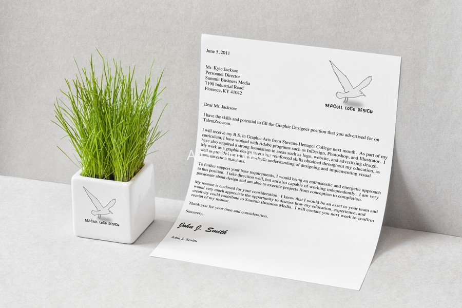 seagull-logo-design-branding-mockup-ayatemplates