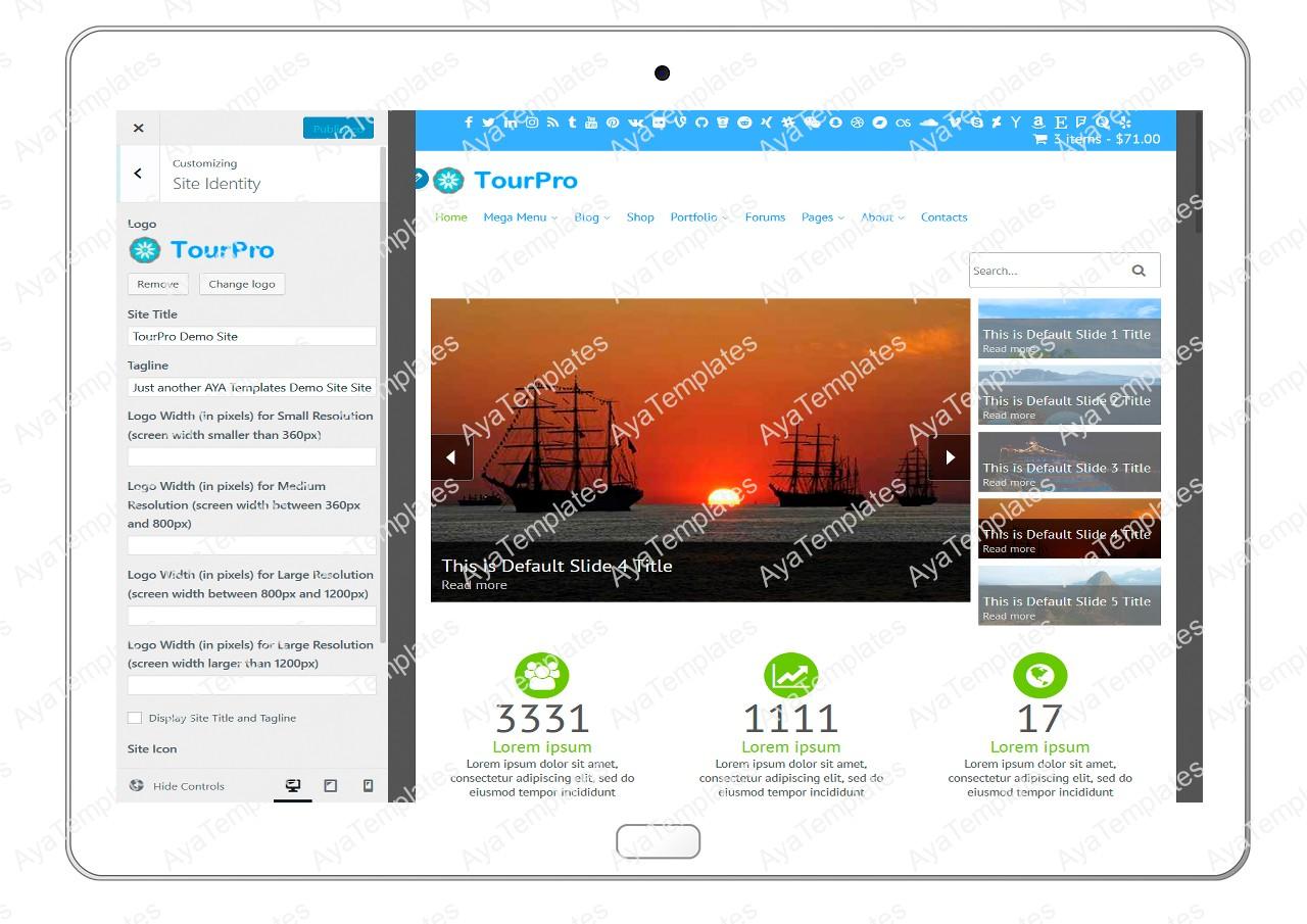 tourpro-customizing-site-identity